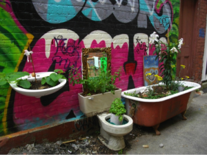 Figure 11: Plants and graffiti art in the Art Alley. Photograph by author.